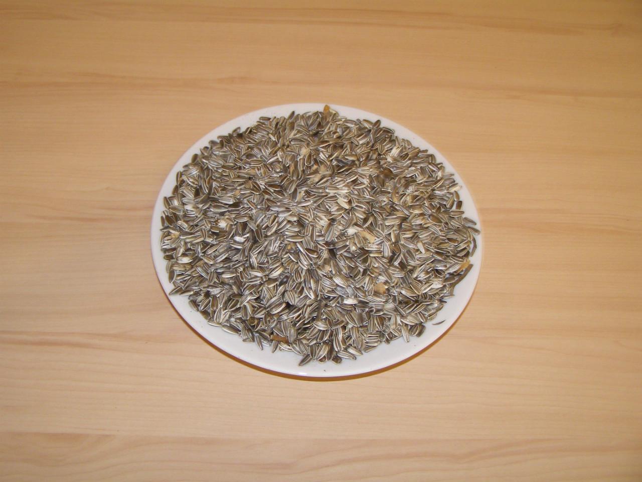Slunečnice žíhaná střední 25 kg