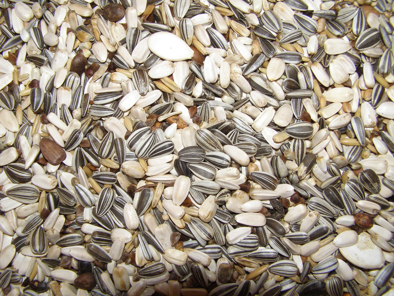 Beduco 62 Deli Nature pro střední a velké papoušky pro chovnou sezónu 3 kg