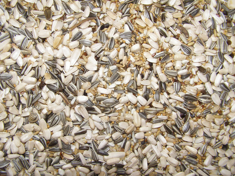 Beduco 59 Deli Nature pro střední papoušky 3 kg
