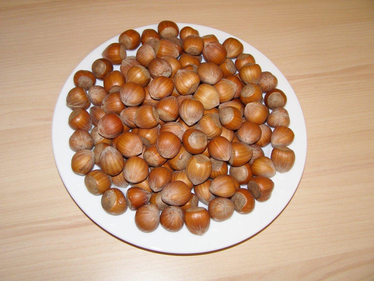 Manitoba Lískové ořechy 1 kg